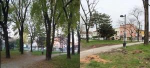 milcovich_parco