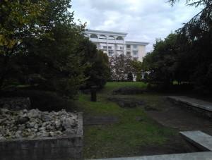 Parco Montirone_sfondo Due Torri ok