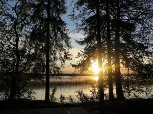 Foresta finlandese