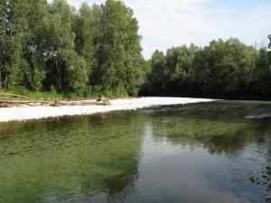 fiume brenta