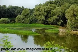 fiume_Brenta_curtarolo
