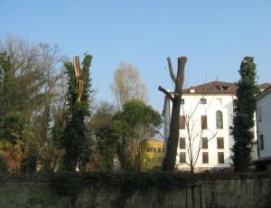 villa gradenigo_piove sacco_legambiente