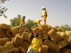 scuola_campi volontariato_legambiente
