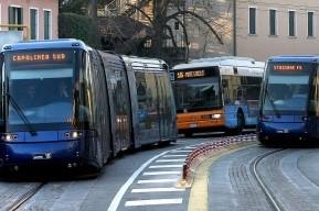 tram bus