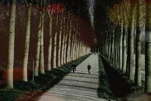 Tavello_camminata_notturna