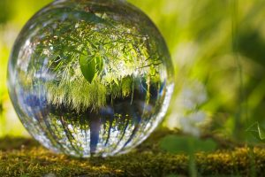 Grass Nature Spherical Reflection Environment Ball